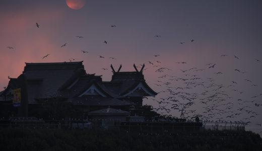 在りし日の蕪島神社